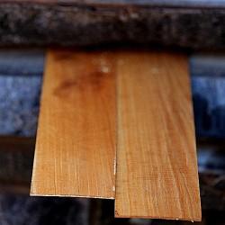 1cmx5cmx100cm Armut Ağacı