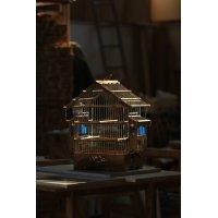 Çatılı Balkonlu |Saka-Muhabbet Kuşu Kafesi