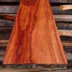 6mmx10cmx100cm Gül Ağacı