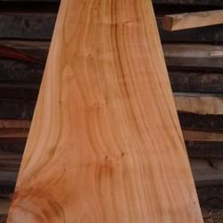 1cmx10cmx100cm Kiraz Ağacı