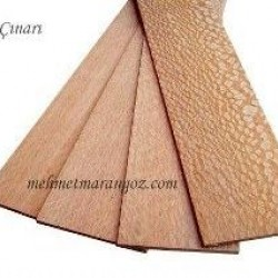 1cmx10cmx100cm Brezilya Çınar Ağacı